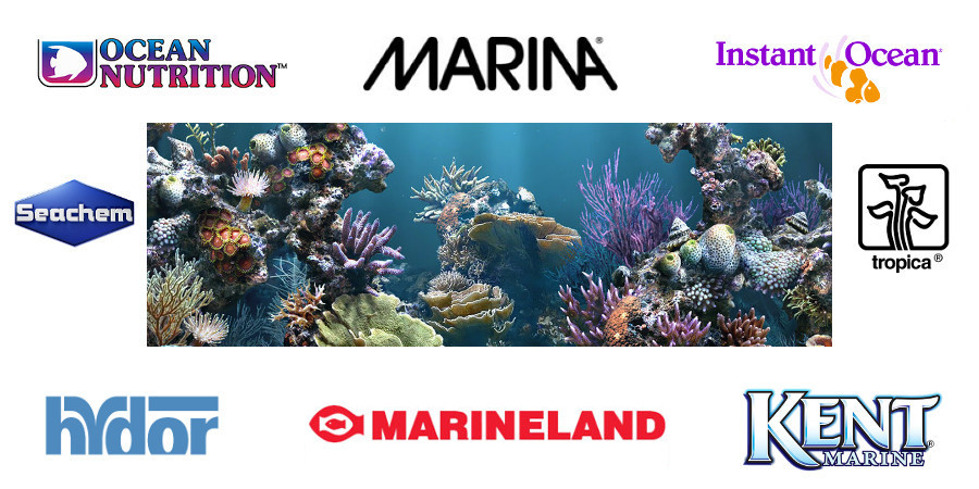 AquA AnimaniA Marine Aquarium photo with select aquarium brand logos.