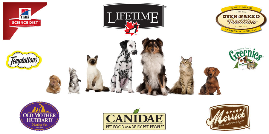 Canines, Felines, Birds, Small Animals and Critters
