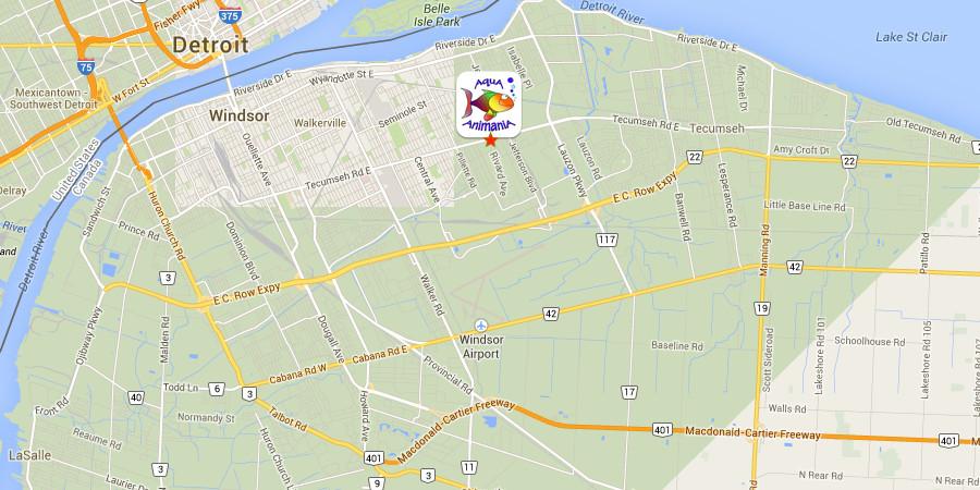Static Location Map - jpg image - 900px x 450px - 166K